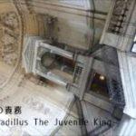 mqdefault 591 150x150 - 【オリジナル】王の責務【小説用BGM】