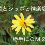 mqdefault 568 150x150 - 「僕とシッポと神楽坂」勝手にCM2!!(ぬれねずみ)