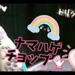 mqdefault 331 150x150 - 【ドラマ】向かいのバズる家族『ナマハゲチョップ( `・∀・´)ノ 』(内田理央 さん)がお気に入り(^◇^)トリッppiもバズりたい(^∇^)★主題歌 きゃりーぱみゅぱみゅ ☆ きみがいいねくれたら