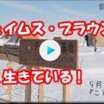 mqdefault 451 150x150 - 『家売るオンナの逆襲』最終話 北川景子、社長就任&ママになり、次シーズンが楽しみな結末に|日刊サイゾー