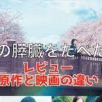 mqdefault 533 150x150 - 【レビュー】映画「君の膵臓をたべたい」と原作との決定的な違いは何?泣けるポイントはどこ?