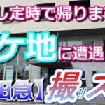 mqdefault 438 150x150 - 俺たちの明日 日曜劇場「集団左遷!!」...