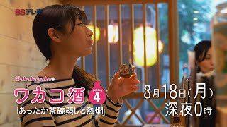 mqdefault 94 320x180 - 「ワカコ酒 Season4」 第11夜 | BSテレ東