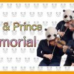 mqdefault 197 150x150 - Memorial/King&Prince(バイオリン、チェロ、ビオラ)