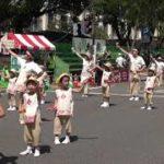 mqdefault 569 150x150 - 認定こども園みかづき幼稚園 第66回よさこい祭り