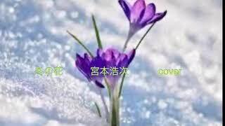 mqdefault 380 320x180 - 女性が歌う /  冬の花  テレビドラマ「後妻業」の主題歌