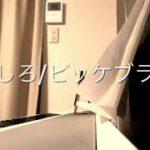 mqdefault 418 150x150 - まっしろ/ビッケブランカ ピアノソロ ぷりんと楽譜上級
