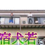 mqdefault 244 150x150 - 【ボロ宿】千葉県銚子市『民宿犬若』に泊まる。潮の香り漂う古き良き宿。【日本ボロ宿紀行】【後編】